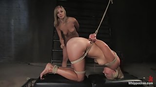 A CLASSIC FAVORITE: Vendetta in the Wall!!! Maitresse Madeline's